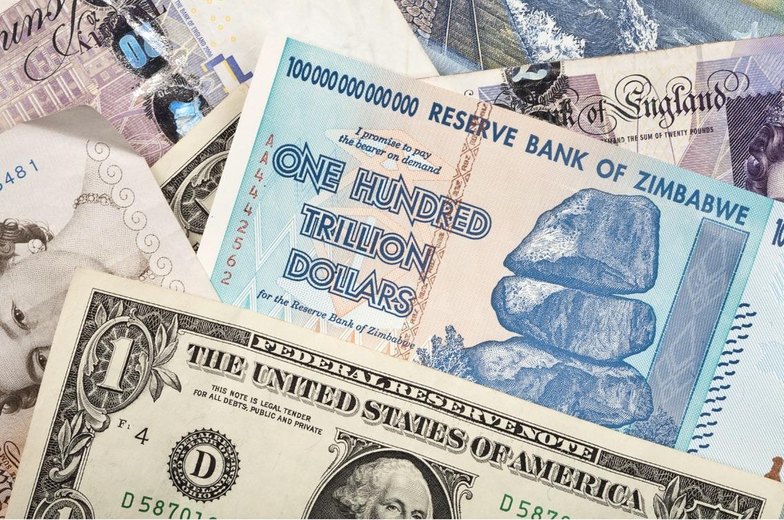 The Zim Dollar