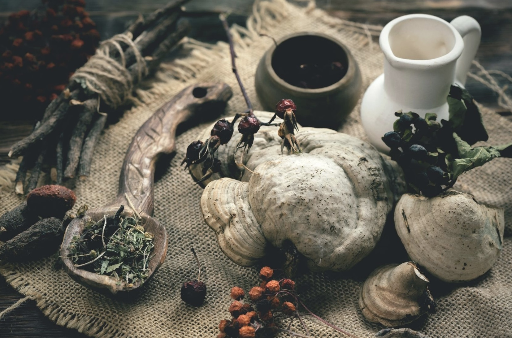 Traditional healers in Africa
